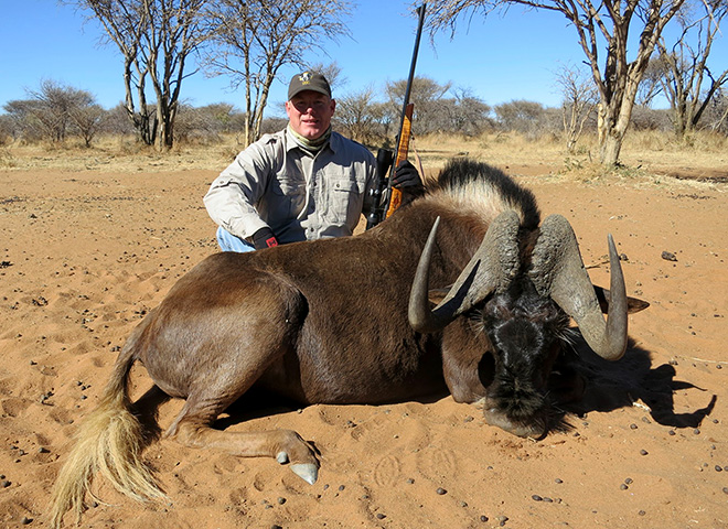 black-wildebeest-makadi-safaris-08